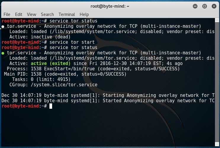 Garantiza tu privacidad con Tor y Proxychains en Kali Linux