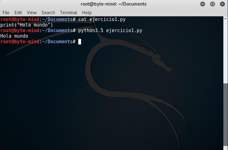 Curso Python Objetivos y nuestro primer programa