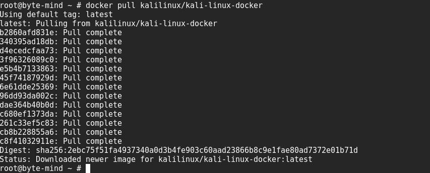 Instalación de Docker orientado al pentesting en Kali Linux