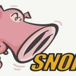 Detecta intrusos en tu red con Snort