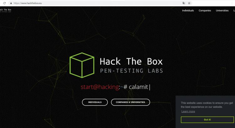 HackTheBox Misc challenge
